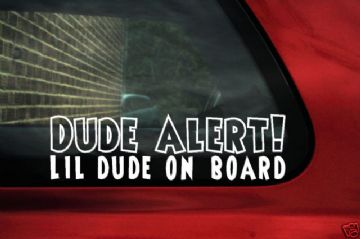 'Lil dude on board'sticker, Decal - ideal for baby boy inside car warning